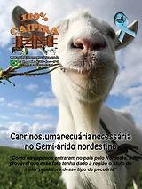 A edição 29 de novembro da melhor revista de agronegócios do Brasil você encontra em: www.revista100porcentocaipira.com.br