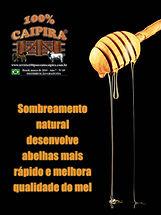 A edição 69 de março da melhor revista de agronegócios do Brasil você encontra em: www.revista100porcentocaipira.com.br