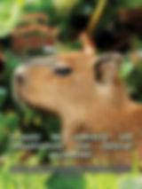 A edição 37 de julho da melhor revista de agronegócios do Brasil você encontra em: www.revista100porcentocaipira.com.br