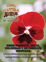 A edição 49 de julho da melhor revista de agronegócios do Brasil você encontra em: www.revista100porcentocaipira.com.br
