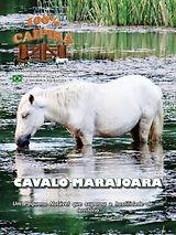 A edição 43 de janeiro da melhor revista de agronegócios do Brasil você encontra em: www.revista100porcentocaipira.com.br