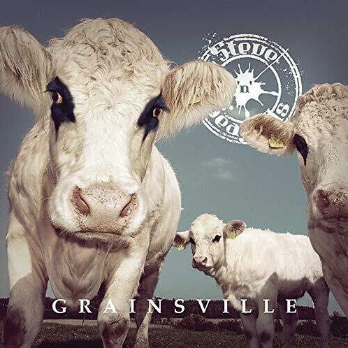 Steve N Seagulls - Grainsville