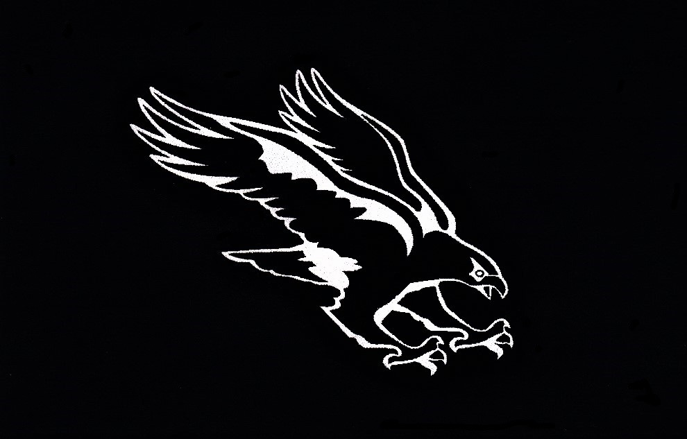 Hawk black&white.jpg