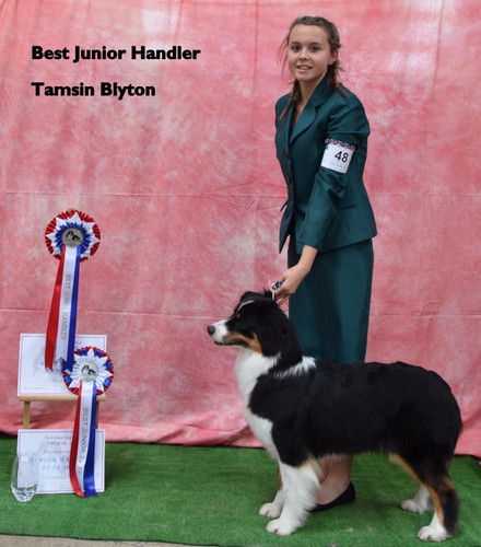 Best Junior Handler