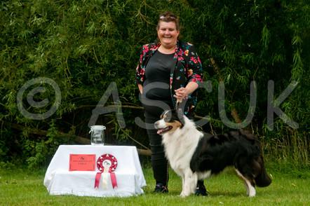 1st Graduate Dog