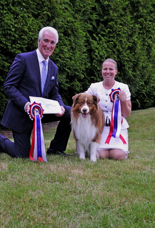 Reserve Best in Show and Best Opposite Sex  Photos Copywrite to Photocall. Please do not use without their permission