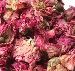 Blossom Rose