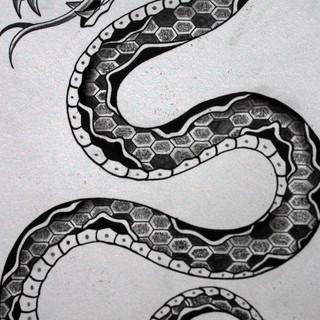 snakeflash2.jpg