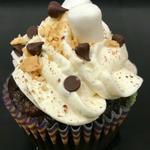 S'Mores Cupcake