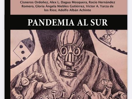 Pandemia al Sur