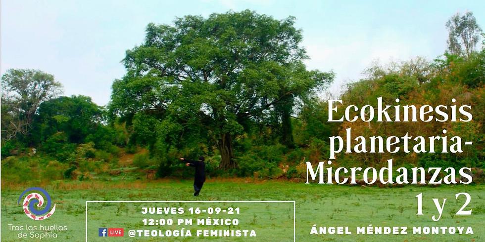 Ecokinesis planetaria- Microdanzas 1 y 2