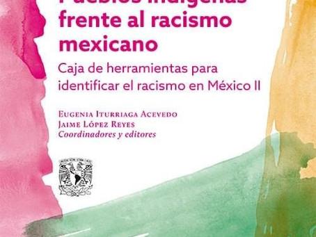 Caja de herramientas para identificar el racismo en México II