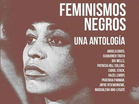 Feminismos negros. Una antología