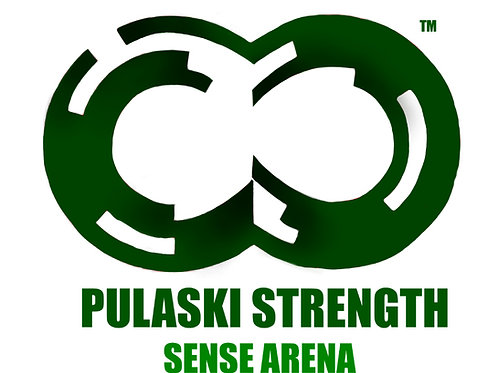 SENSE ARENA 6 Training Sessions