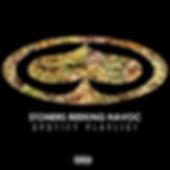SRH Spotify playlist.jpg