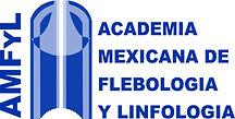 logo amfyl (1).jpg