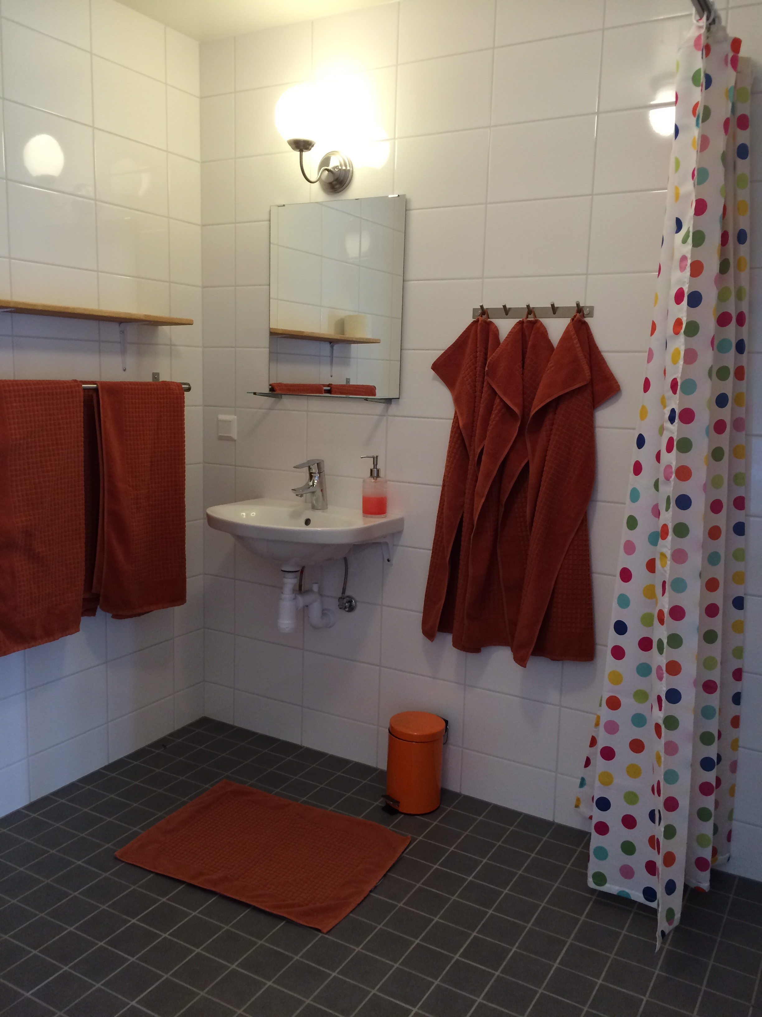 Handikappanpassat badrum