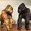 Thumbnail: Gorilla guld