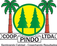 COOP PINDO.jpg