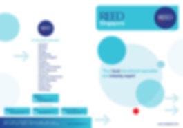 REED-folder-A4-oversize.jpg