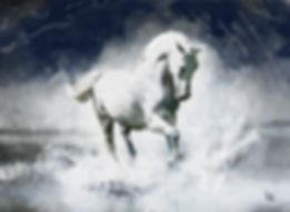 arabian-stallion-small.jpg