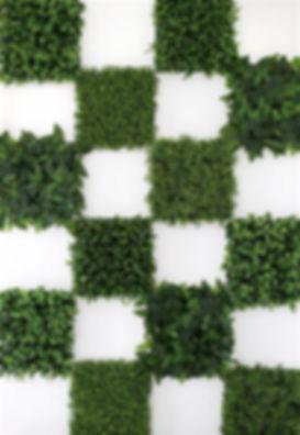 square greenery.jpg