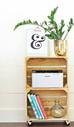 Want a great DIY storage idea?