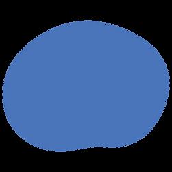 Circle-Navy.png