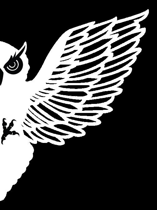 BIRDIESJD.png