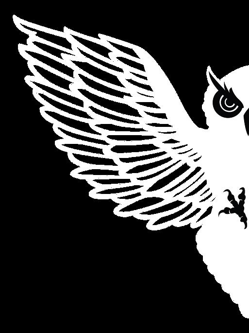 BIRDIESJD2.png