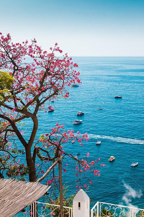 Blossom Sea