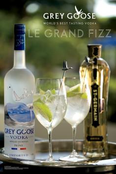 GREY GOOSE & ST GERMAIN