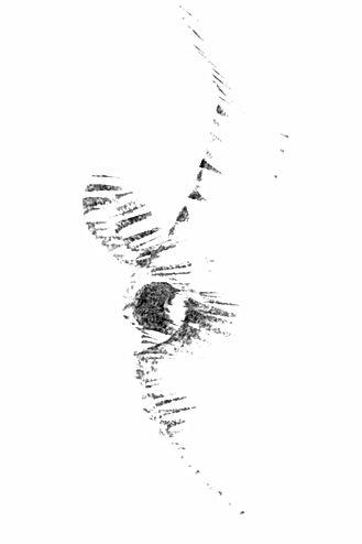 La Lioura dessin d'écoute issu de la série fontaines de Clans, Eléonore Bak © 2007