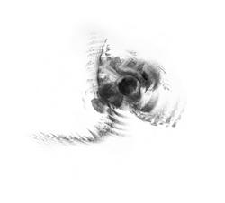 Simulation double motif
