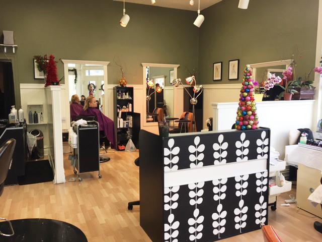 SF Hair Salon of Ronda Nasuti
