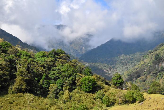 Chakra CR Trail12.jpg