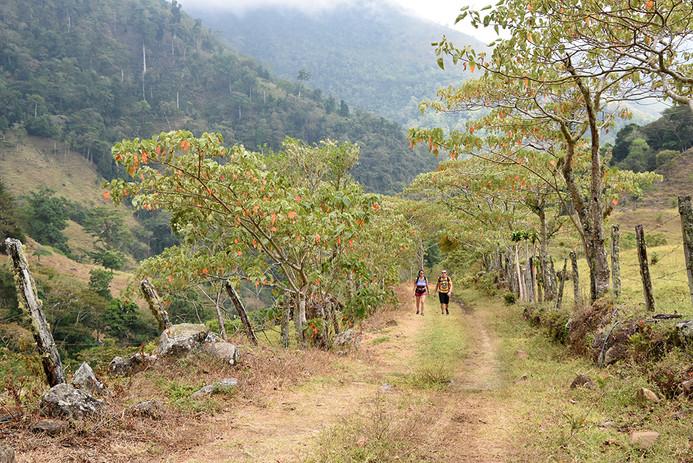 Chakra CR Trail15.JPG