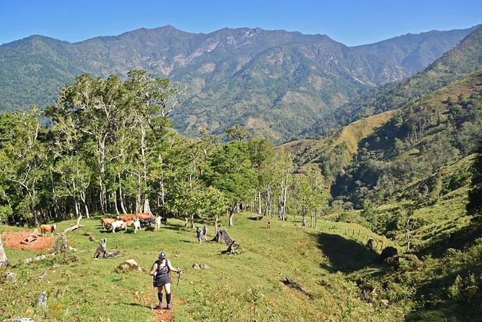 Chakra CR Trail16.JPG