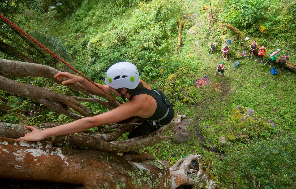 Chakra CR tree climb02.jpg