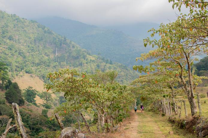 Chakra CR Trail21.jpg