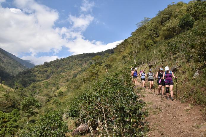 Chakra CR Trail25.JPG