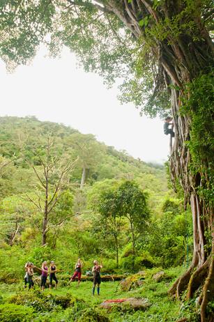 Chakra CR tree climb03.jpg