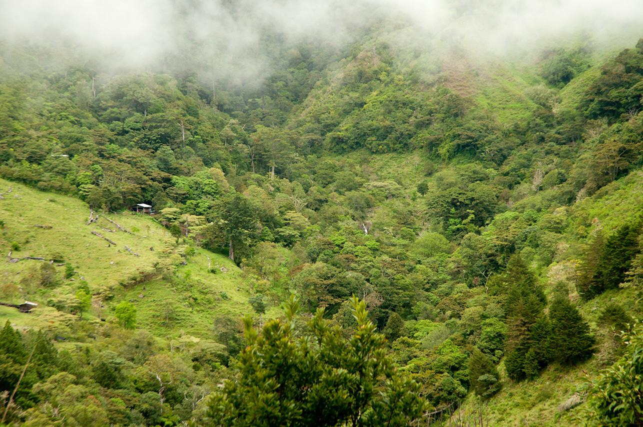 Chakra CR Camp01.jpg
