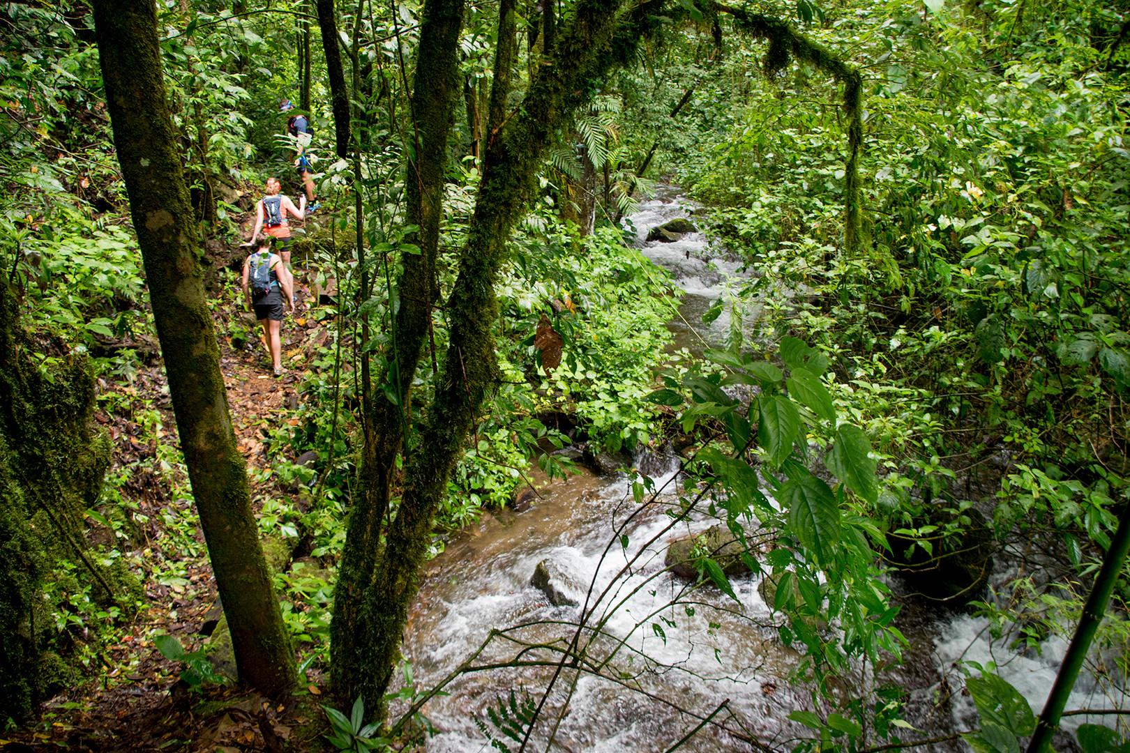 Chakra CR Trail23.jpg