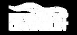 chevrolet_logo_blanco.png