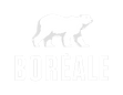 Logo_Boreale_V_box_noir_edited.png