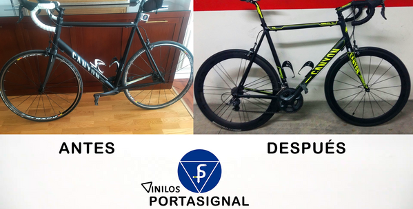 Bicicleta vinilada