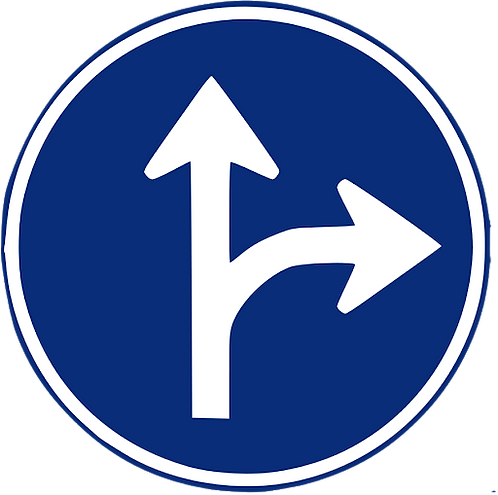 R-403 A Únicas direcciones y sentidos permitidos.