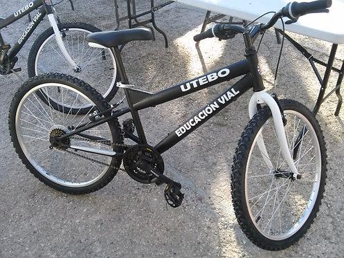 Bicicleta educación vial