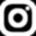 instagram logo branco-01.png